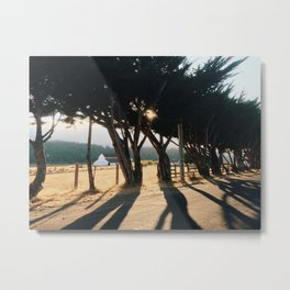 Point Reyes Barn Metal Print
