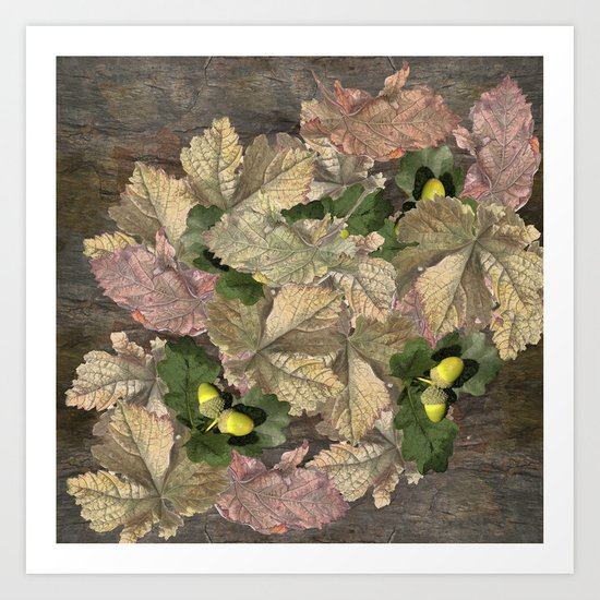 Acorns in Autumn Art Print