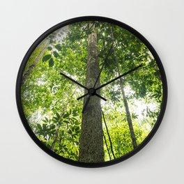 Amazonia Wall Clock