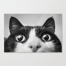 Funny Cat black and white Canvas Print