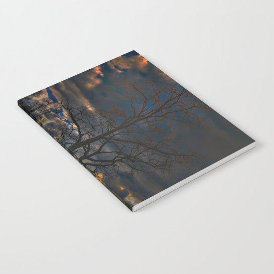 Treeflection II Notebook