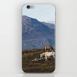 Connemara  - Horse and Mountains iPhone Skin