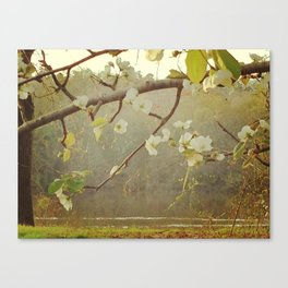 Apple Blossoms and River Canvas Print