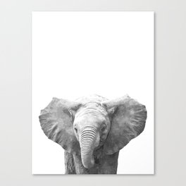 Black and White Baby Elephant Canvas Print