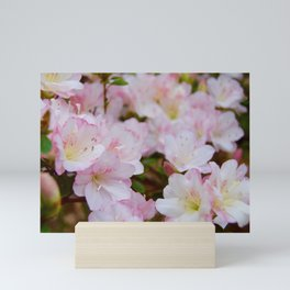 Blooming Azalea Flowers Mini Art Print