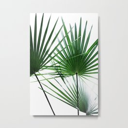 Palm Leaves 12 Metal Print