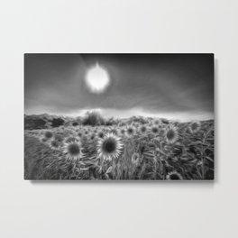 Monochrome Moonlight Sunflowers Metal Print