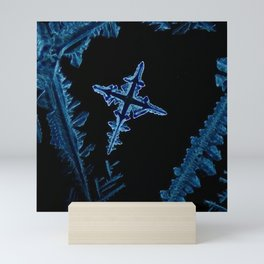 Cross of Salt Mini Art Print