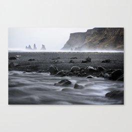 Shades of Black Canvas Print