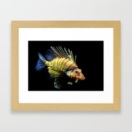 Red Lionfish Framed Art Print