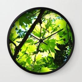 Platanus Wall Clock