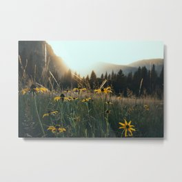 Daisy Meadow in Yosemite Metal Print