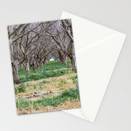 Nature - Crow's Landing Trees 3 Stationery Cards