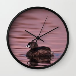 Pied-Billed Grebe - Study 2 Wall Clock
