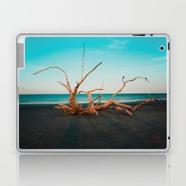 Jekyll Island, USA #society6 #decor #buyart Laptop & iPad Skin