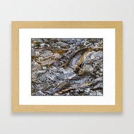 Interpretive Creek Framed Art Print