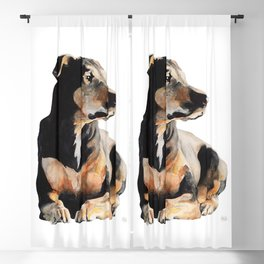 Dobermann Blackout Curtain