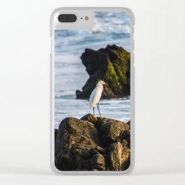 naturaleza Clear iPhone Case