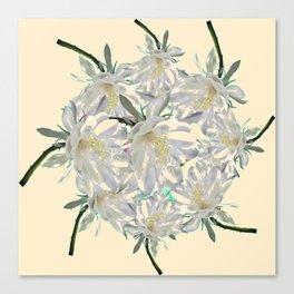 WHITE  NIGHT BLOOMING TROPICAL CEREUS  ON CREAM ART Canvas Print