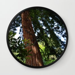 Shot in a Tree Wall Clock
