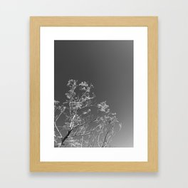 Nature and The City Framed Art Print