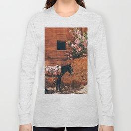Mexico 17 Long Sleeve T-shirt
