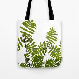 Green Rowan Leaves White Background #decor #society6 #buyart Tote Bag