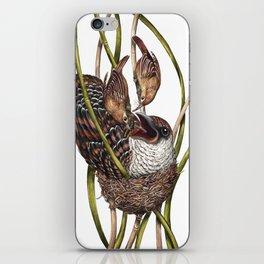Baby Bird II iPhone Skin