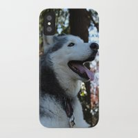 husky iPhone & iPod Cases featuring Husky. by Saremotion