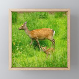 Mother and child - fallow deer with young Framed Mini Art Print