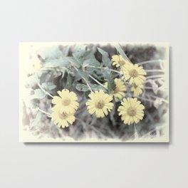 Yellow Pastel Wildflowers II Metal Print