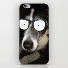 Mr. Cool iPhone & iPod Skin