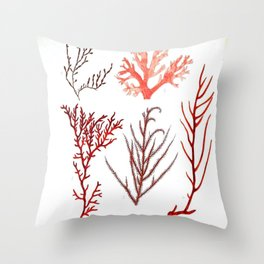 Algae Study I Throw Pillow