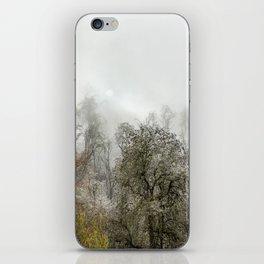 Winter Spell iPhone Skin