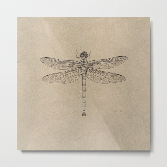 Dragonfly Fossil Dos Metal Print