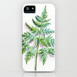 Fern leaf (watercolor on textured background) iPhone Case