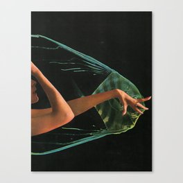 Nocturnal Animal Canvas Print