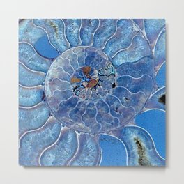 Blue seashell -mother-of-pearl - Beautiful backdrop Metal Print