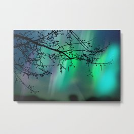 Tree Branch and Aurora Borealis Night Sky Metal Print
