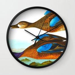 Blue-Winged Teal Bird Wall Clock