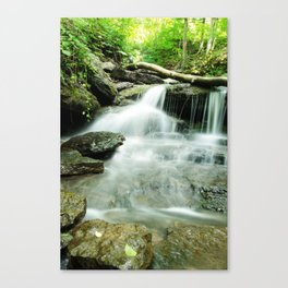Pixley Waterfall and Forest 2 Rural Landscape Photograph Canvas Print