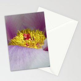 peony bloom macro XXVII Stationery Cards