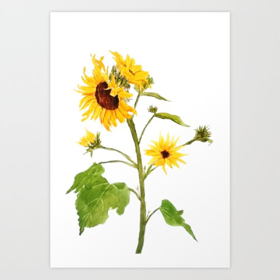 One sunflower watercolor arts Art Print
