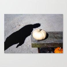 Little white pumpkin Canvas Print