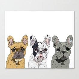 Triple Frenchies Canvas Print