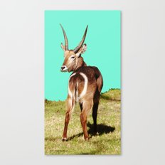 THAT Is Not A Dart Board! Canvas Print