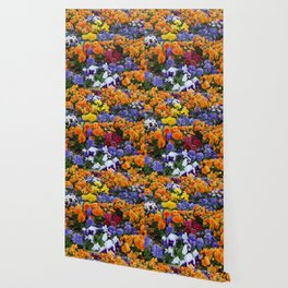 Pancy Flower 2 Wallpaper