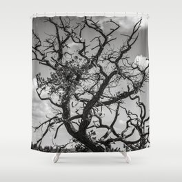 Ancient Tree, Survivor, Alive Shower Curtain