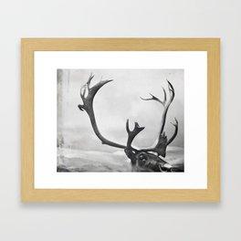 fig. 01   moose Framed Art Print