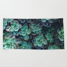 Succulent Blue Green Plants Beach Towel